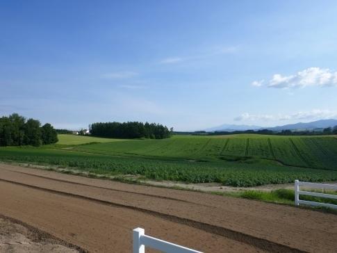 新栄の丘4.jpg