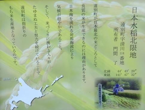 日本最北の水田2.jpg