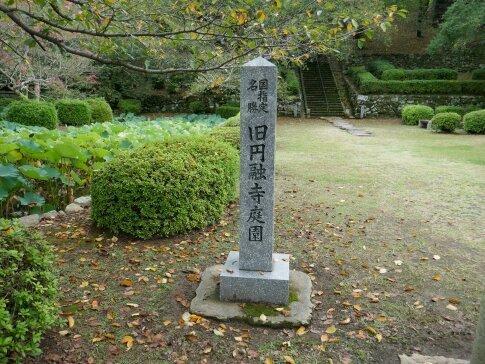 旧円融寺庭園.jpg