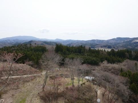 旭城からの景色.jpg