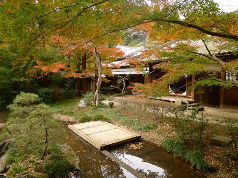 明月院庭園の紅葉2.jpg