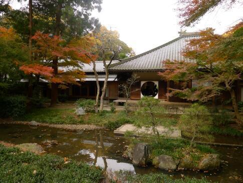明月院庭園の紅葉3.jpg