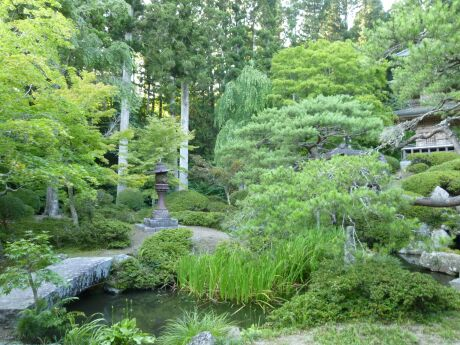 普門寺庭園.jpg