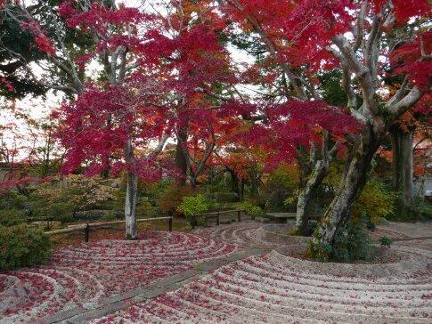 月山寺の紅葉.jpg