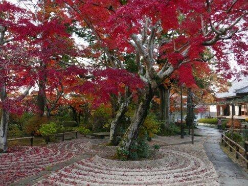 月山寺の紅葉1.jpg