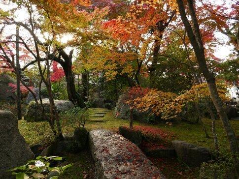 月山寺の紅葉5.jpg