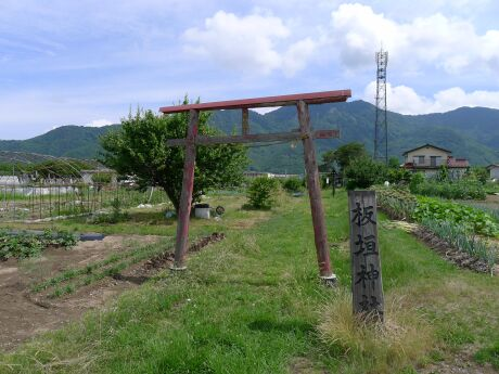 板垣神社.jpg