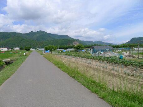 板垣神社2.jpg