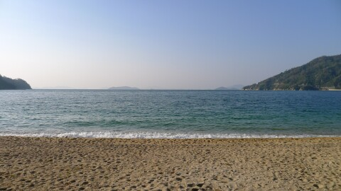 桂浜 広島1.jpg