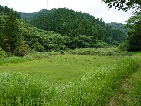 桐野利秋開墾地3.jpg