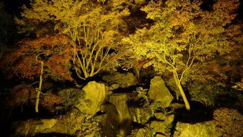 桜山公園の夜景6.jpg