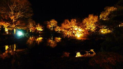 桜山公園の夜景7.jpg