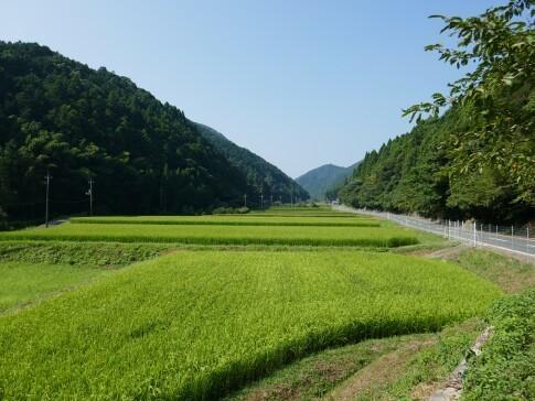 桜楓山荘跡2.jpg