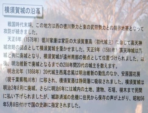 横須賀城址2.jpg