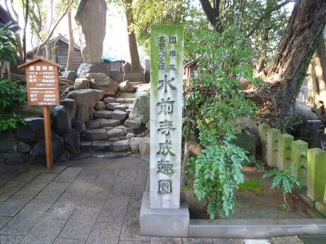 水前寺成趣園.jpg