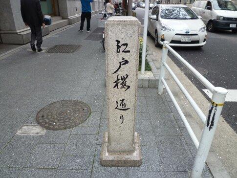 江戸桜通りの桜.jpg