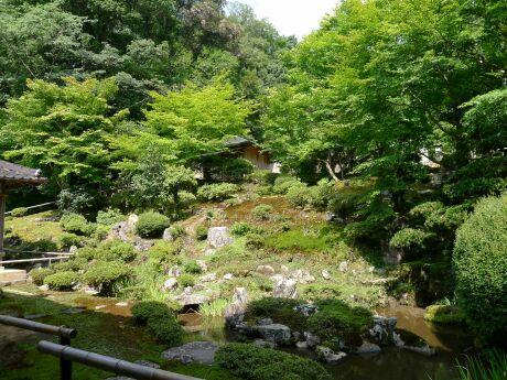 沢庵寺2 庭園.jpg