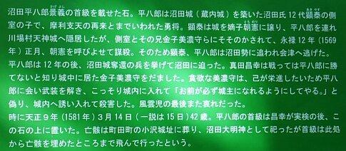 沼田城 平八石2.jpg