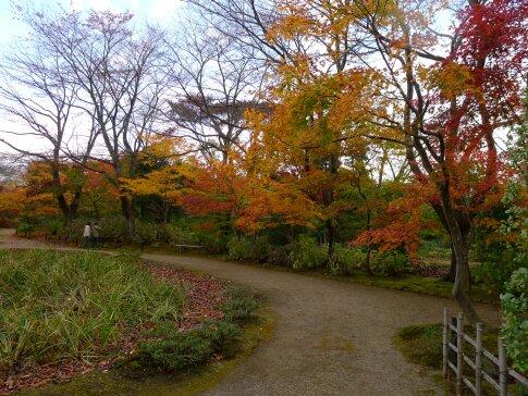 浄楽園  紅葉6.jpg
