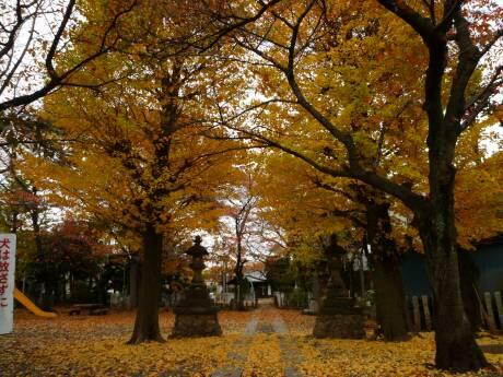 浮島神社 紅葉.jpg