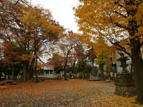 浮島神社 紅葉2.jpg