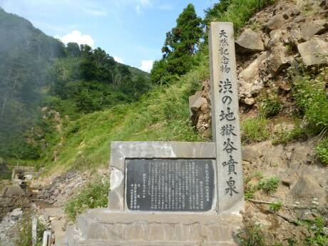 渋の地獄谷噴泉.jpg