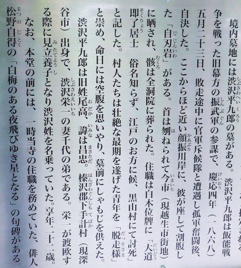 渋沢平九郎の墓3.jpg