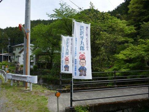 渋沢平九郎の墓4.jpg