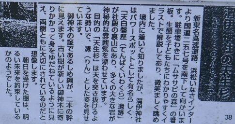 渭伊神社4.jpg