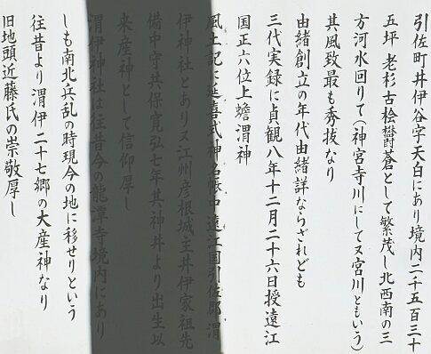 渭伊神社5.jpg