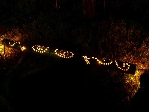 熱海梅園ライトアップ9b.jpg