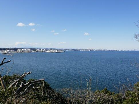 猿島から横須賀駐屯地方面.jpg