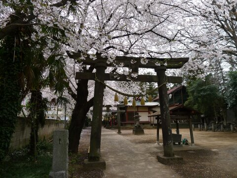 瑳珂比神社2.jpg
