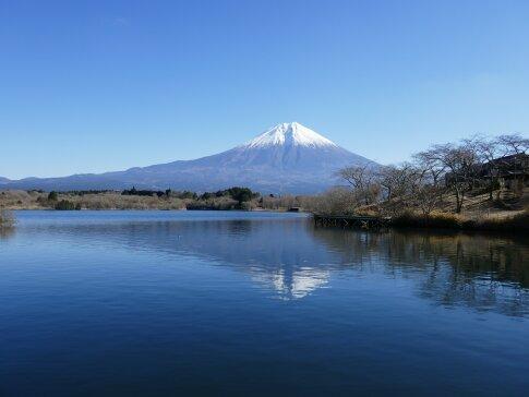 田貫湖 富士山.jpg