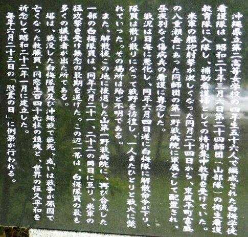白梅之塔2.jpg