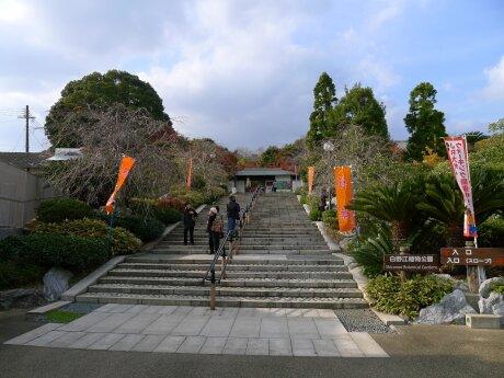 白野江植物公園.jpg
