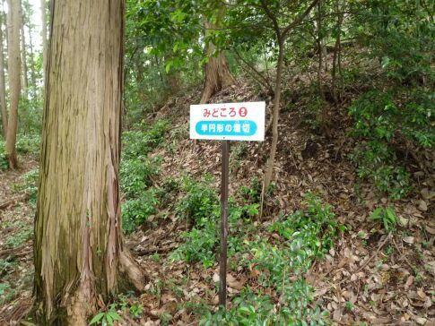 真名子城3.jpg