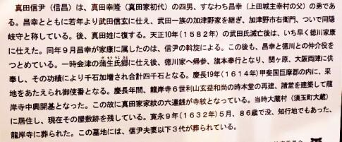 真田信伊の墓2.jpg