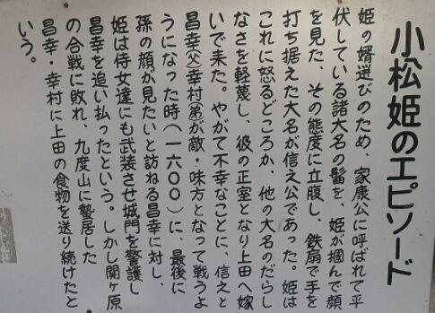 真田小松姫の墓5.jpg
