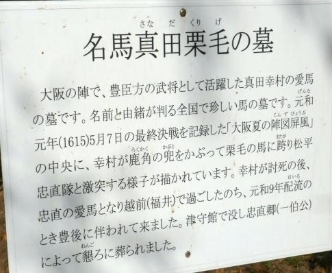 真田幸村愛馬栗毛墓所2.jpg