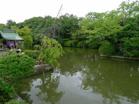神泉苑3.jpg