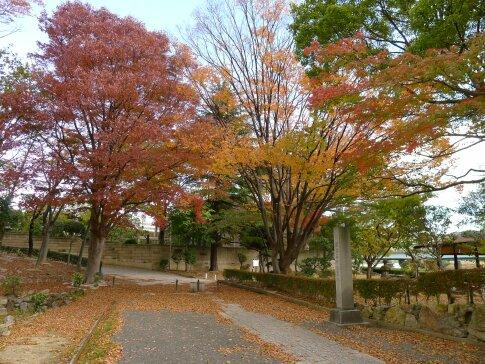 紅葉山公園4.jpg