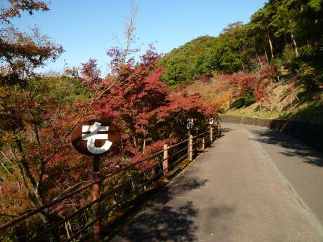 織姫公園 もみじ谷1 .jpg