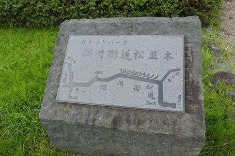 羽州街道松並木.jpg