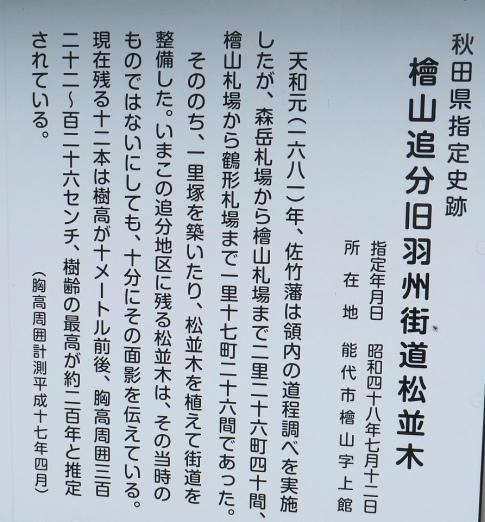 羽州街道松並木2.jpg