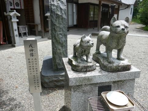 老杉神社4.jpg