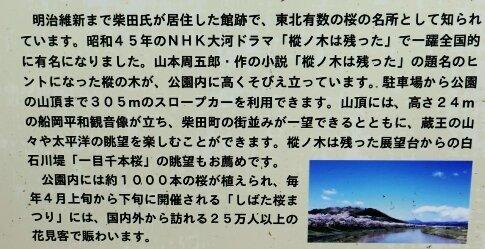 船岡城址3.jpg