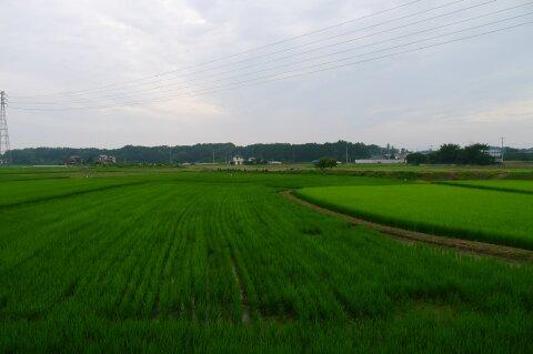 苦林野古戦場4.jpg