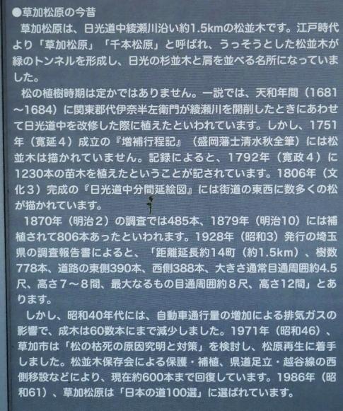 草加松原2.jpg