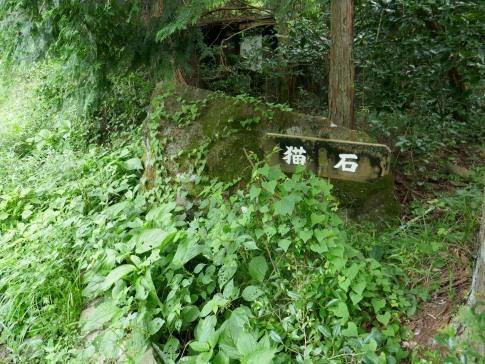 蔦の細道7.jpg